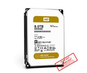 HDD PC WD 8T GOLD Chuyên Camera